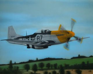 P51 Mustang low level
